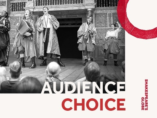 Audience Choice Preview Image