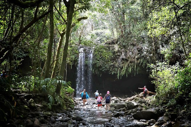 Best East Maui Waterfalls and Rainforest Hike Preview Image