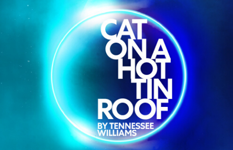 Cat On A Hot Tin Roof Preview Image