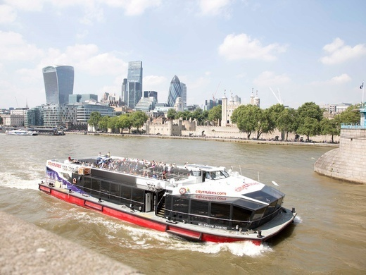 City Cruises 24 hour River Pass Preview Image