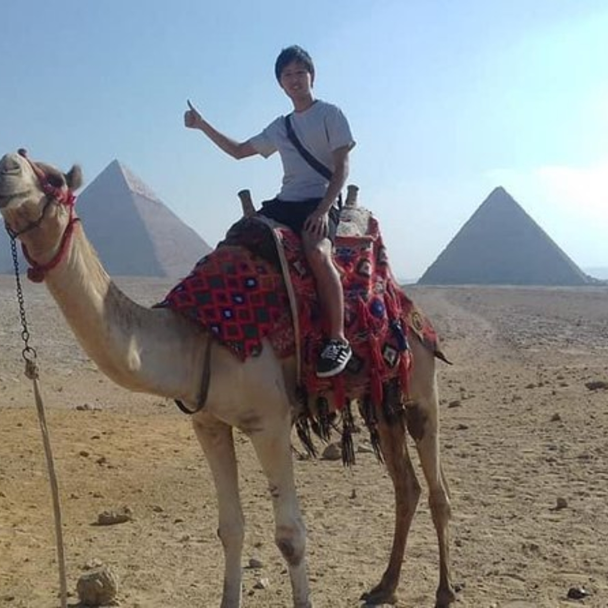 Explore the Pyramids of Giza and Egyptian Museum and Bazaar include Camel Ride, Lunch Images