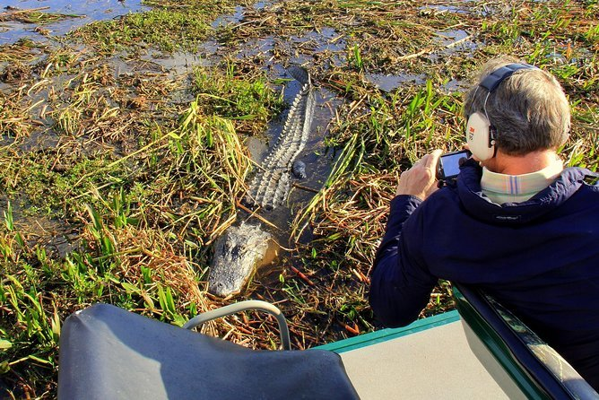 Florida Everglades Airboat Tour and Alligator Encounter with Optional Lunch Preview Image