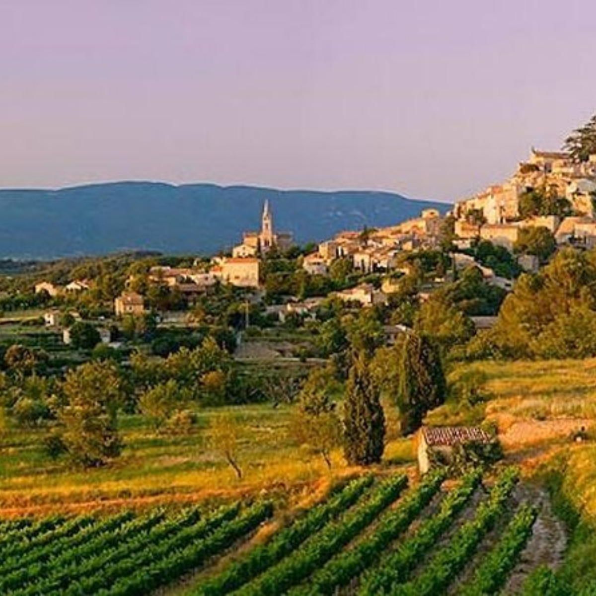 From Nice towards Provence whole day private Provence tour to medieval times Images