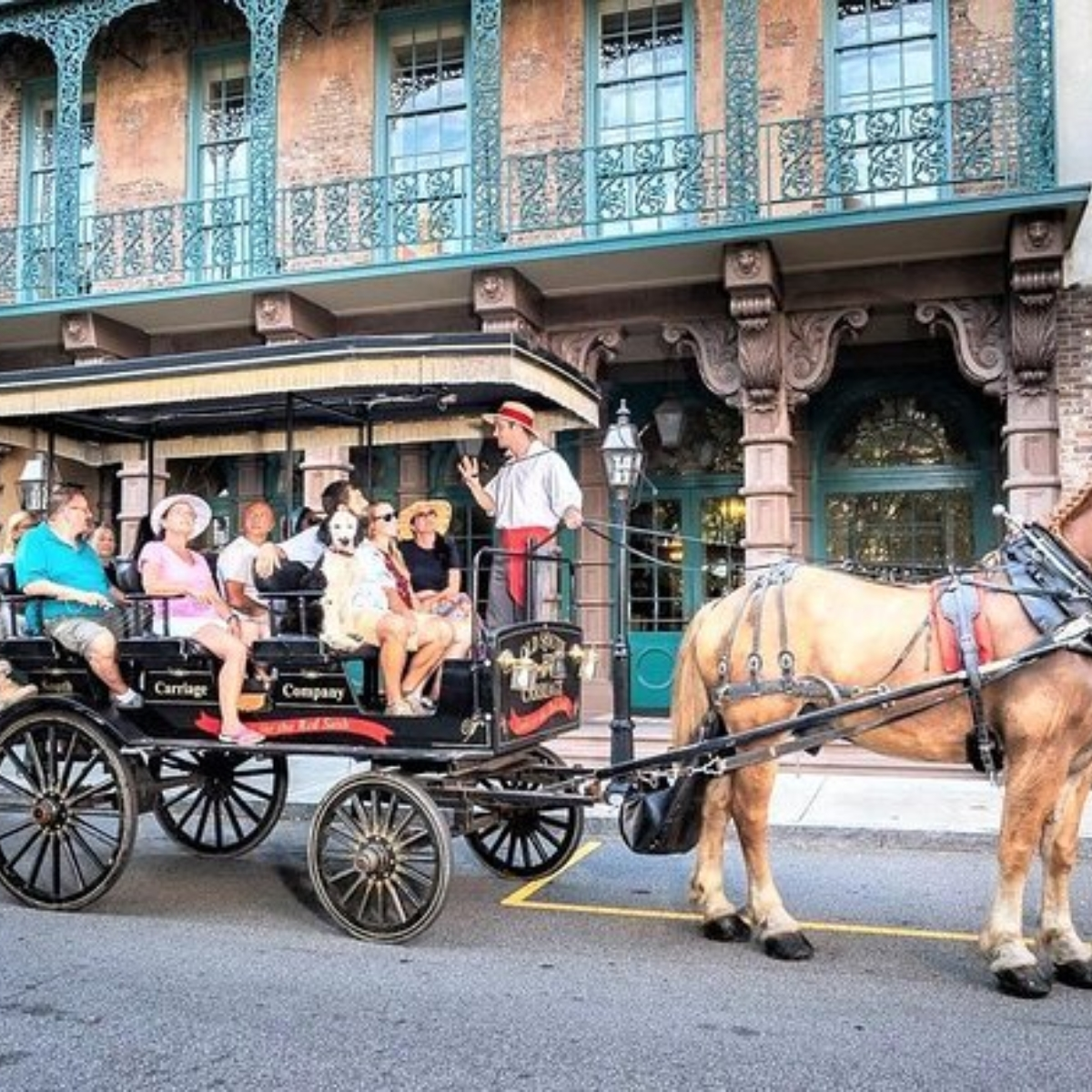 Historic Charleston Carriage Ride Images