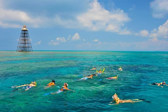 Key West Reef Snorkeling Cruise Preview Image