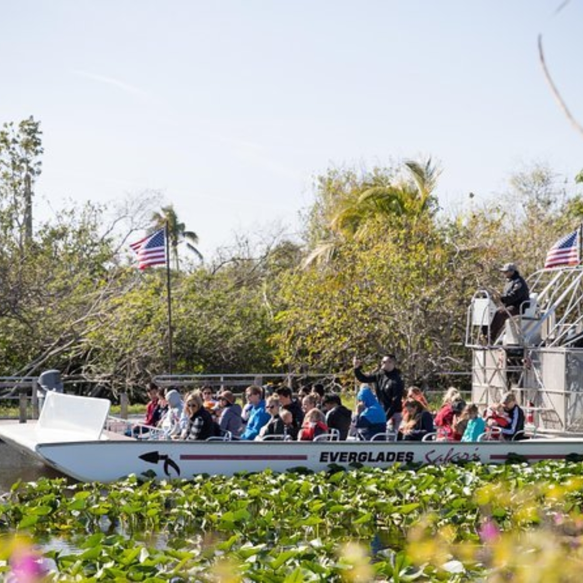 Miami Everglades Airboat Adventure with Biscayne Bay Cruise Images