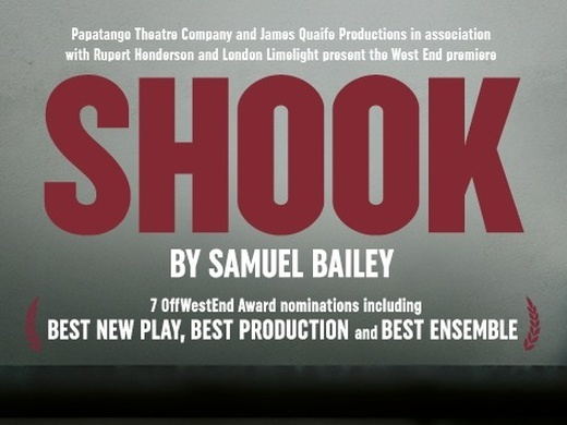 Shook Preview Image