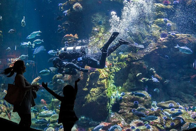 Skip the Line: California Academy of Sciences General Admission Ticket Preview Image