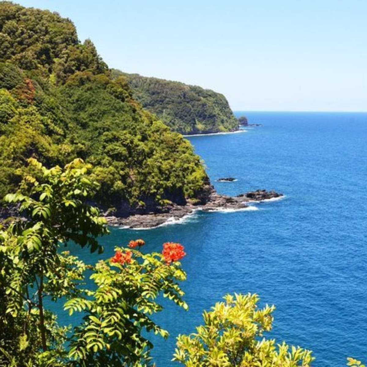 Small-Group Road to Hana Luxury Tour Images
