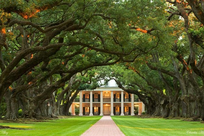 Small-Group Tour of Oak Alley and Laura Plantation from New Orleans Preview Image