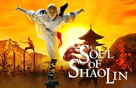 Soul of Shaolin Preview Image