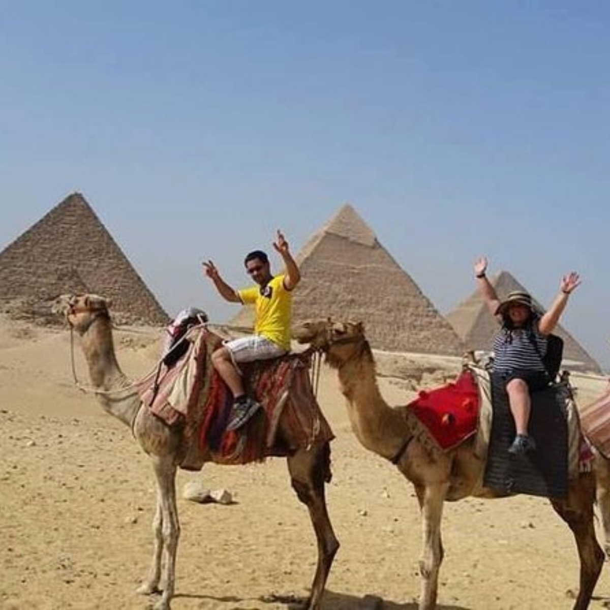 Sunset camel ride at the pyramids and pyramids sound and light show Images