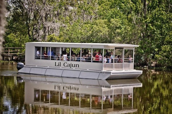 Swamp and Bayou Sightseeing Tour with Boat Ride Preview Image