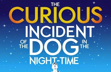 The Curious Incident of the Dog in the Night-Time Preview Image