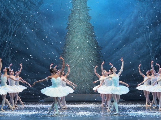 The Nutcracker Preview Image
