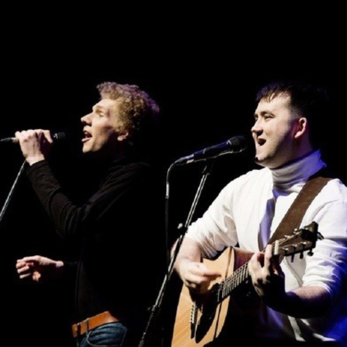 The Simon and Garfunkel Story Images