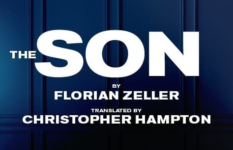 The Son Preview Image