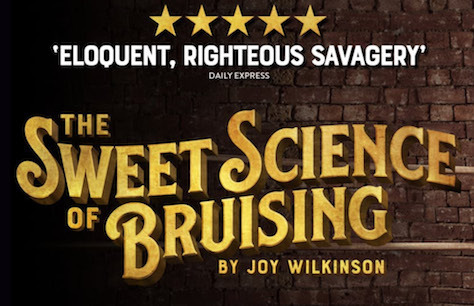 The Sweet Science of Bruising Preview Image