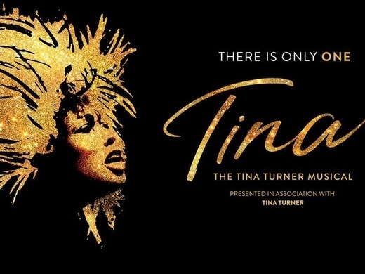 Tina: The Tina Turner Musical Preview Image
