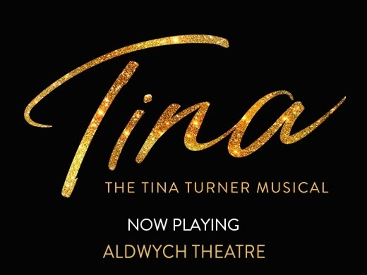 TINA - The Tina Turner Musical Preview Image