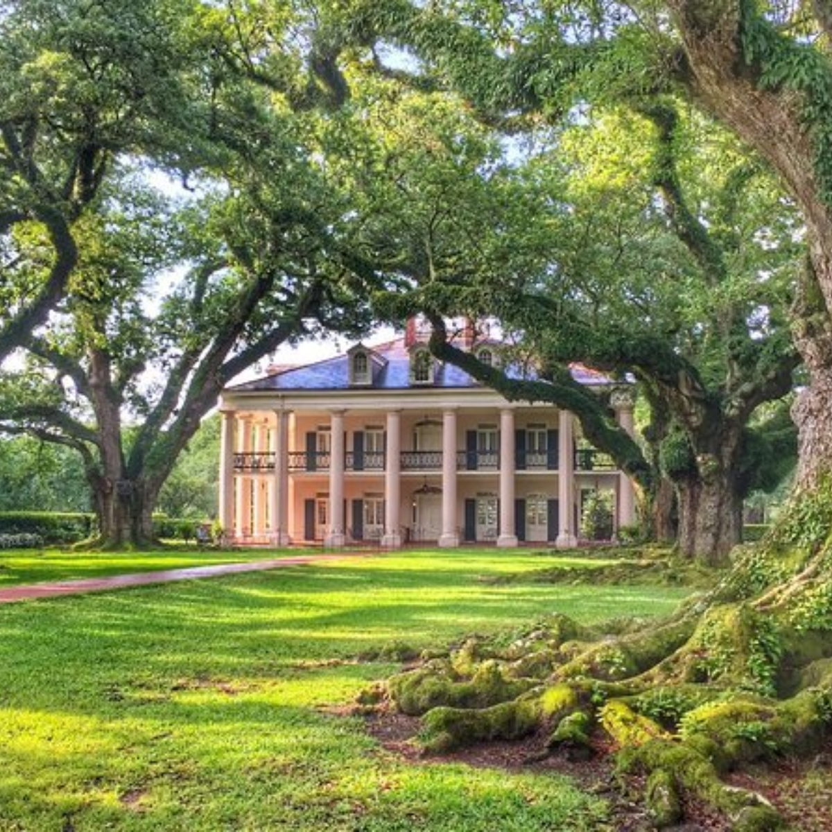 Tour of Oak Alley Plantation Images