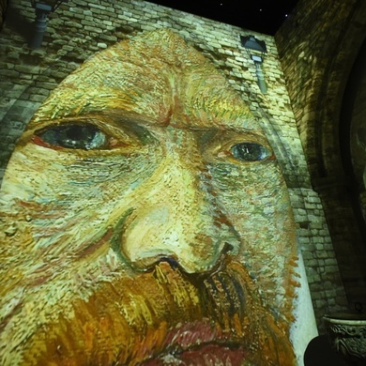 Van Gogh: The Immersive Experience Images