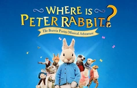 Where is Peter Rabbit? Preview Image
